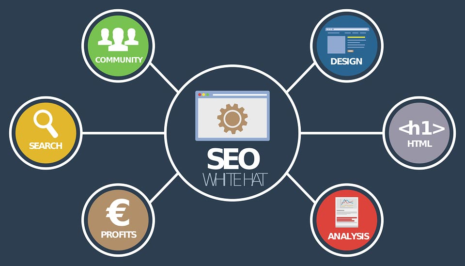 What is the best Seo Software