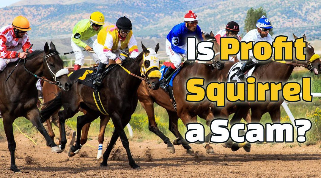 Is Profit Squirrel a Scam? Matched Betting Gone Wrong!