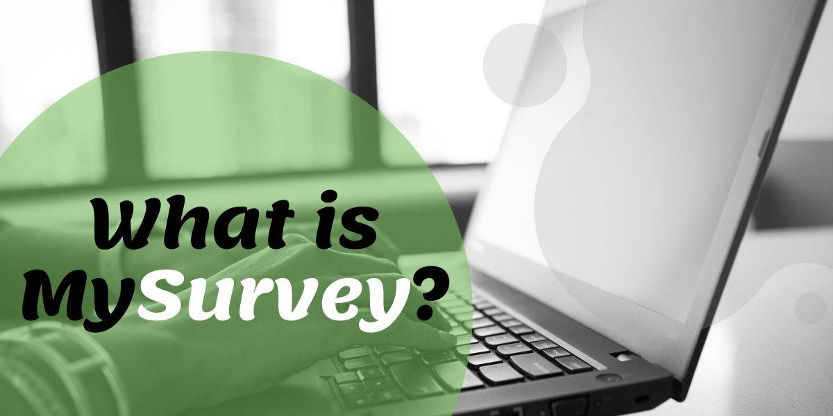 What Is MySurvey All About? The Bare Naked Truth!