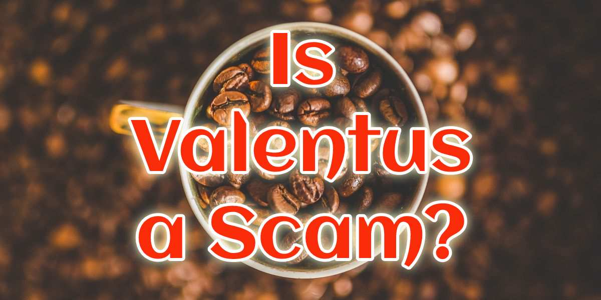 Is Valentus a Scam? The secrets behind the magic bean!