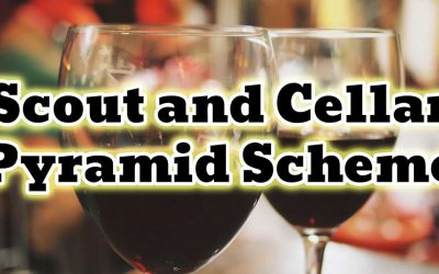 The Scout and Cellar Pyramid Scheme