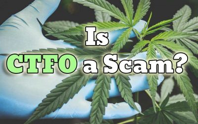 Is CTFO a Scam?