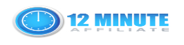 12 Affiliate System Logo