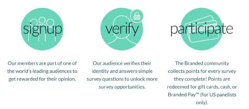 how does branded surveys work