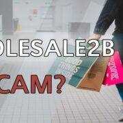 Is Wholesale2b A Scam?